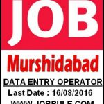 Contract Basis Data Entry Operator Job in Murshidabad